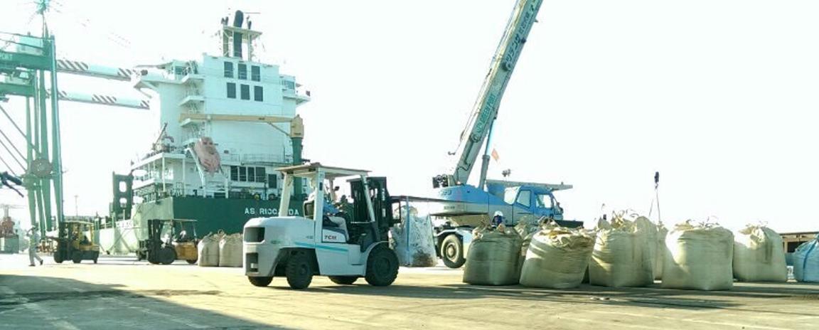 Dịch vụ xe nâng hạ tại cầu cảng Hải Phòng